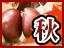 【フード・ドリンク】新米!栗!松茸!! 秋の味覚特集