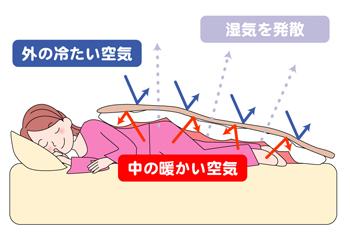 """毛布は布団の""""上""""から?"""
