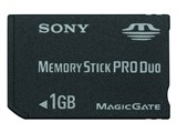 MSX-M1GST (1GB)