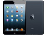 iPad mini Wi-Fi���f�� 16GB MD528J/A [�u���b�N&�X���[�g]