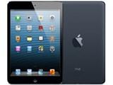 iPad mini Wi-Fi���f�� 32GB MD529J/A [�u���b�N&�X���[�g]