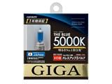 ザ・ブルー BD1629 [ハロゲン ザ・ブルー 5000K H16]