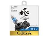 ギガ BD629N [ハロゲン ホワイト 5000K HB3/HB4]