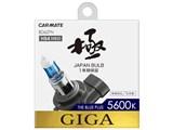 ギガ BD627N [ハロゲン ホワイト 5600K HB3/HB4]
